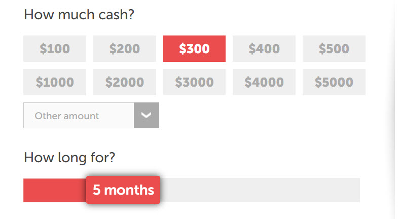 Choose your loan amount